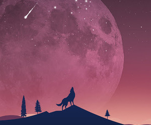 wolf, moon, and wallpaper image