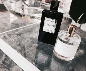 fashion, perfumes, and interior image