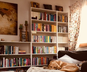 books, love, and article image
