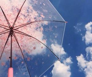 sakura, kawaii, and sky image