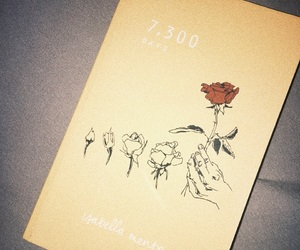 300, grow, and roses image