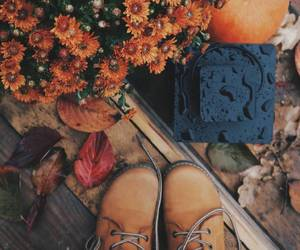 autumn, boots, and photo image