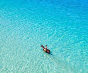 horse, beach, and beautiful image