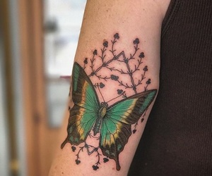 color, butterfly tattoo, and Tattoos image