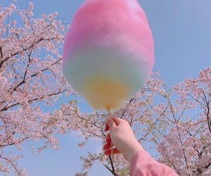 rainbow, cotton candy, and pastel image