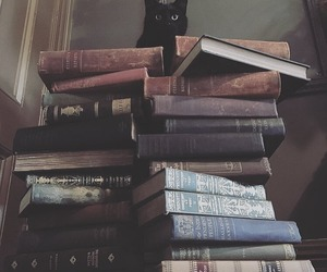 book, cat, and black cat image