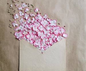 flowers, envelope, and nature image