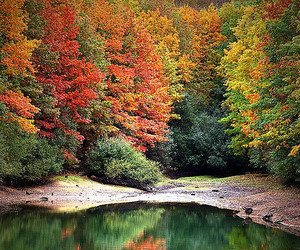 autumn, sony, and spain image