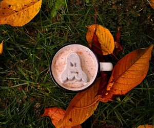 autumn, hot cocoa, and food image