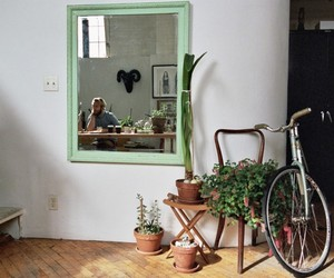 home, bike, and plants image