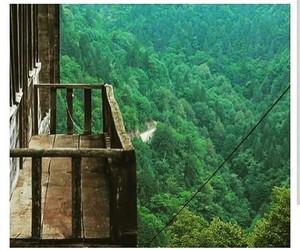 balcony and tree image