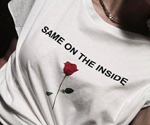 rose, style, and aesthetic image