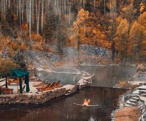 brown, forest, and lake image