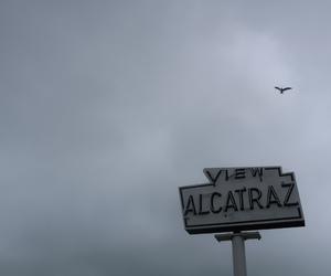 alcatraz, goals, and live image