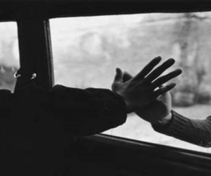 hands, black and white, and couple image
