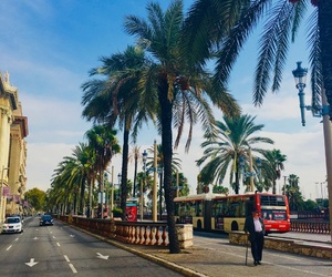 Barcelona, palmtree, and sightseeing image
