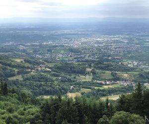 germany, schwarzwald, and view image