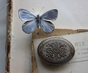 beautiful, butterfly, and book image