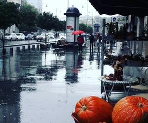fall, rain, and rainnymood image