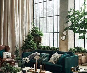 home, plants, and green image