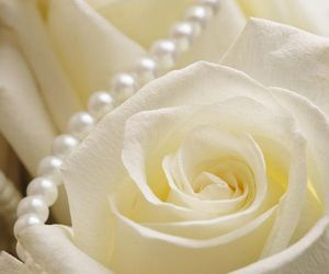 feminine, lovely, and pearl image