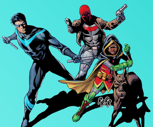 dick grayson, robin, and red hood image