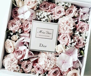 box, girly, and roses image