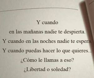 books and frases image