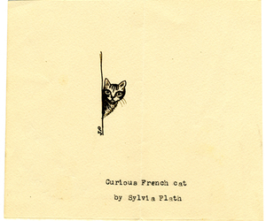 cat, sylvia plath, and drawing image