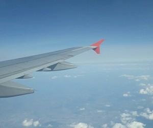 airport, fly, and turkish airlines image