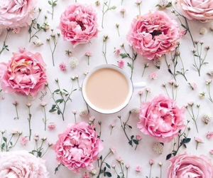 flowers, pink, and tea image