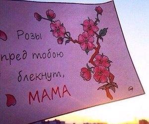 цитата and мама image