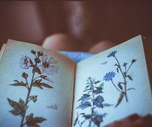 Image by juliana