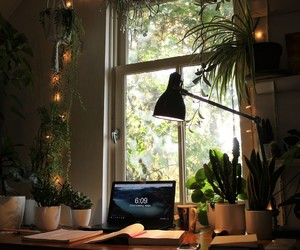 desk, plants, and study image