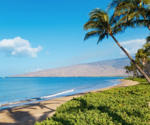 beaches, escape, and hawaii image