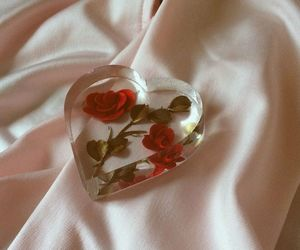 delicate, red, and flower image