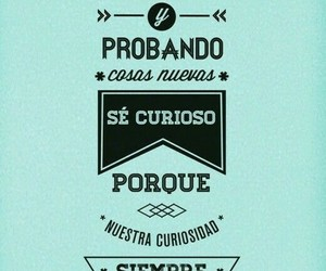 frases, walt disney, and curiosity image