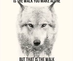 quote and wolf image