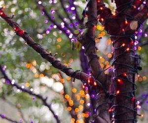 light, tree, and Halloween image