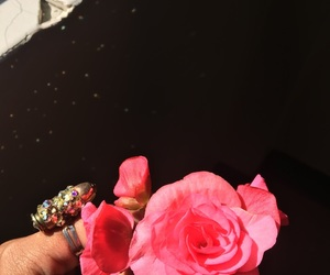 Drake, flowers, and glitter image