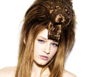 hair and lion image