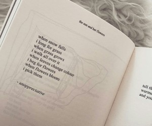 book, books, and poem image