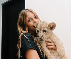animal, girl, and lion image