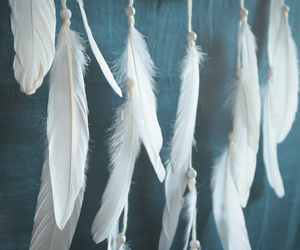 feather, giant, and white image