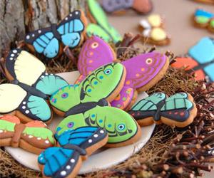 butterfly and Cookies image