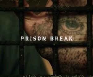 article, prison break, and series image