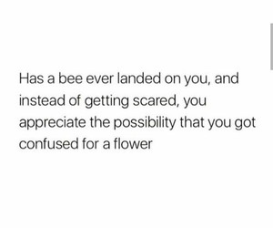 bee, love, and flower image