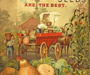 advertising, catalog, and farming image