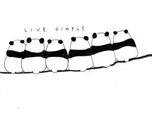 panda, simply, and cute image