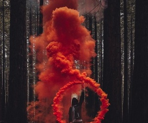 smoke, red, and forest image